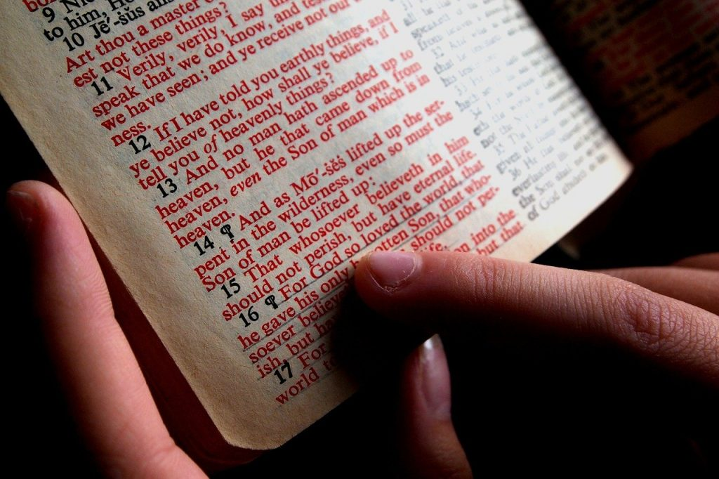 bible, hand, designate